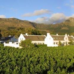 Steenberg Boutique Hotel and vineyards